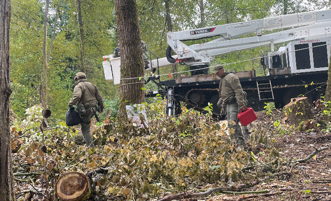 RCMP tactical team members have started to move in Wednesday morning in an attempt to remove Trans Mountain protesters from trees in the path of the pipeline in Burnaby.