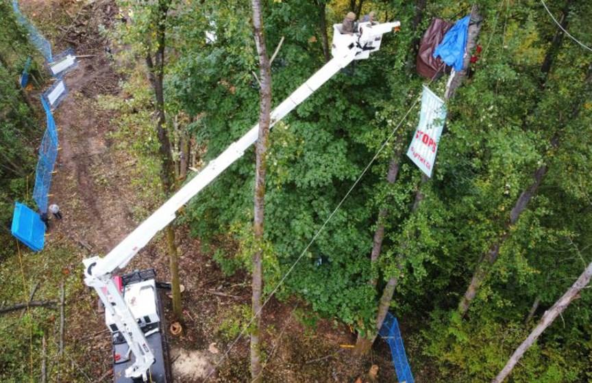 extraction best tmx trees