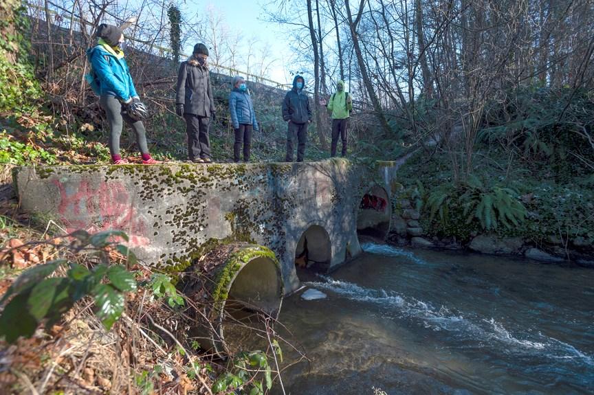 TMX trans mountain brunette stoney creek
