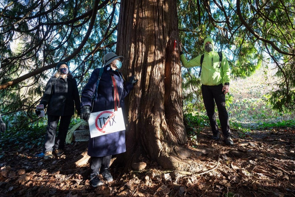 An organizer with Protect the Planet Stop TMX, on Jan. 23, shows local residents and activists a tree that is slated for removal as part of the Trans Mountain pipeline expansion project.