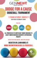 Dodge For a Cause Poster