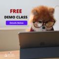 FREE DEMO CLASS (1)