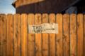 Mailchimp Thumbnails - Blog