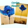 fiorini 1