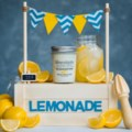 The Lemonade Stand-1
