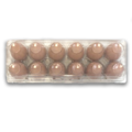 egg cartons plastic