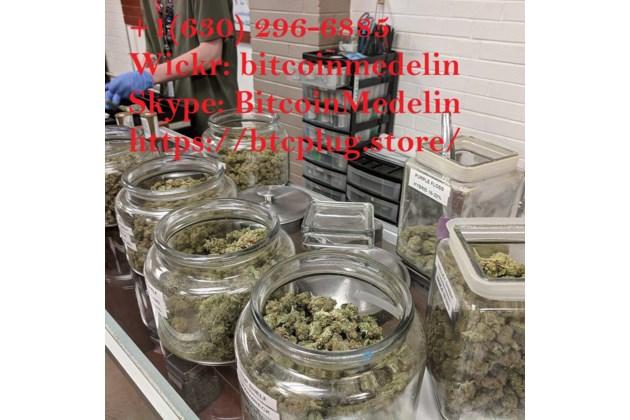 Buy Weed, Cannabis, Marijuana, Kush online at www.btcplug.store