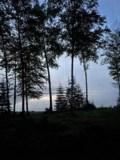 2 Lake M
