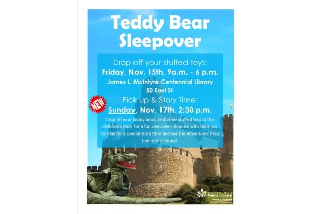 Teddy Bear Sleepover Poster