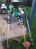 grass whip pic