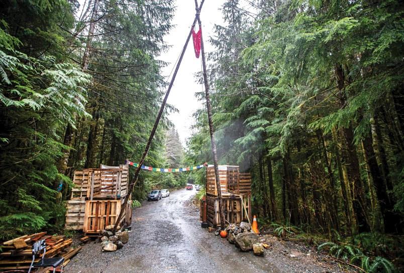 River Camp Fairy Creek blockade