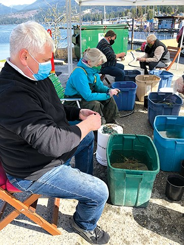 Volunteers place washers on newly harvested eelgrass shoots.