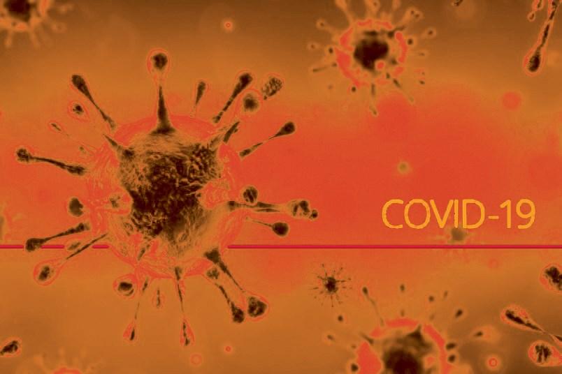 N.Covid Update orange