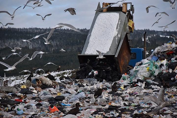 Sechelt Landfill