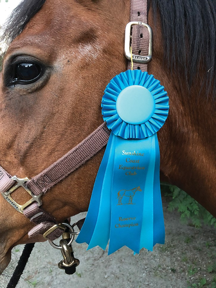 S.Equestrian