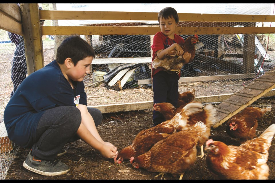 John Eddison, 10, left, and Tweet Powder, 4, check on their chicken on Wednesday (May 26) in Stoney Nakoda First Nation. (Chelsea Kemp/The Cochrane Eagle)