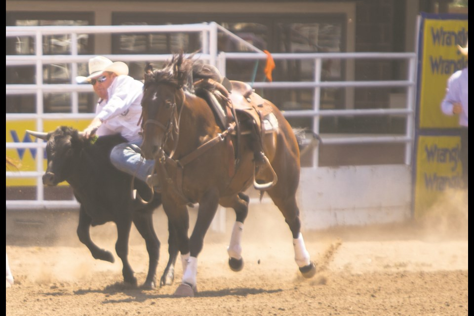 Cochrane based steer wrestler Tanner Milan competes at the Calgary Stampede on Monday (July 12). (Chelsea Kemp/The Cochrane Eagle)