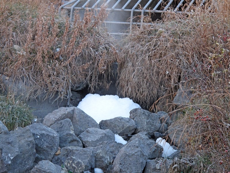 A white foam was spotted flowing out of a storm drain under Griffin Road into Bighill Creek. Residents are concerned about the substances they saw flowing from the storm