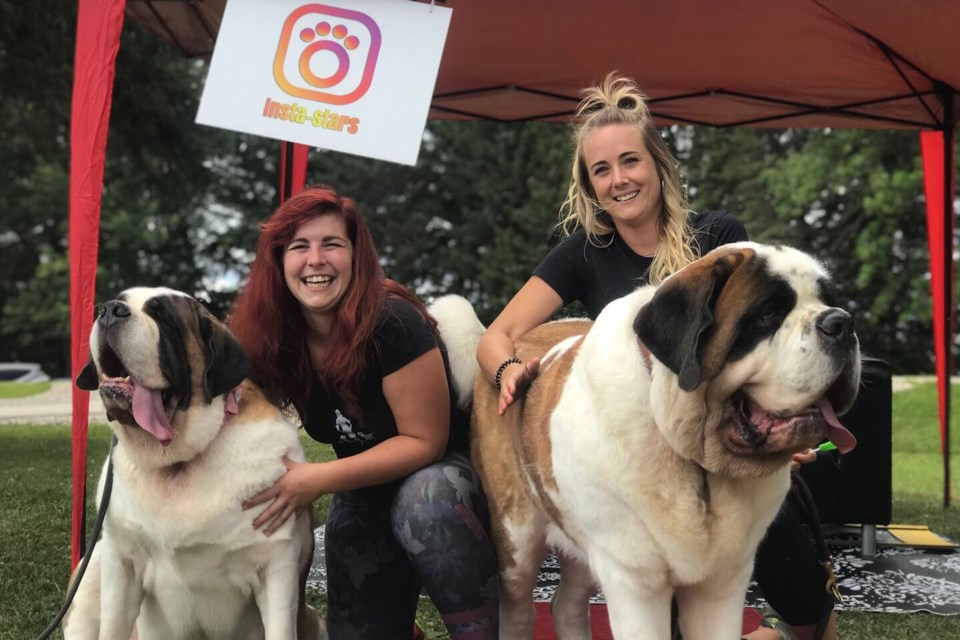 Jennifer Livingstone and Megan Mossop of MegWalks at the Tails of the Mountain pet festival. Contributed photo
