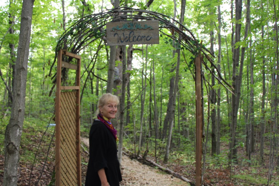Welcome to the whimsical woods. Maddie Johnson for CollingwoodToday