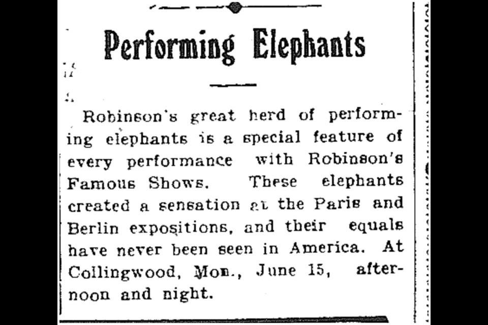 The Messenger published this article prior to the circus coming to town. Image contributed by Collingwood Museum