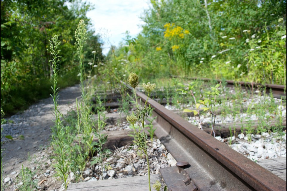 A portion of the Barrie-Collingwood Railway is shown in a file photo. Jessica Owen/BarrieToday