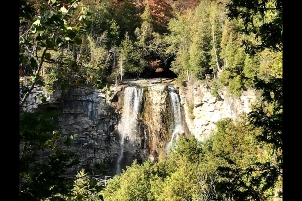 Eugenia Falls features a 30-metre waterfall. On Tuesday afternoon, a youth fell several metres while exploring the site off of the designated trail. Jennifer Golletz/ Collingwood Today
