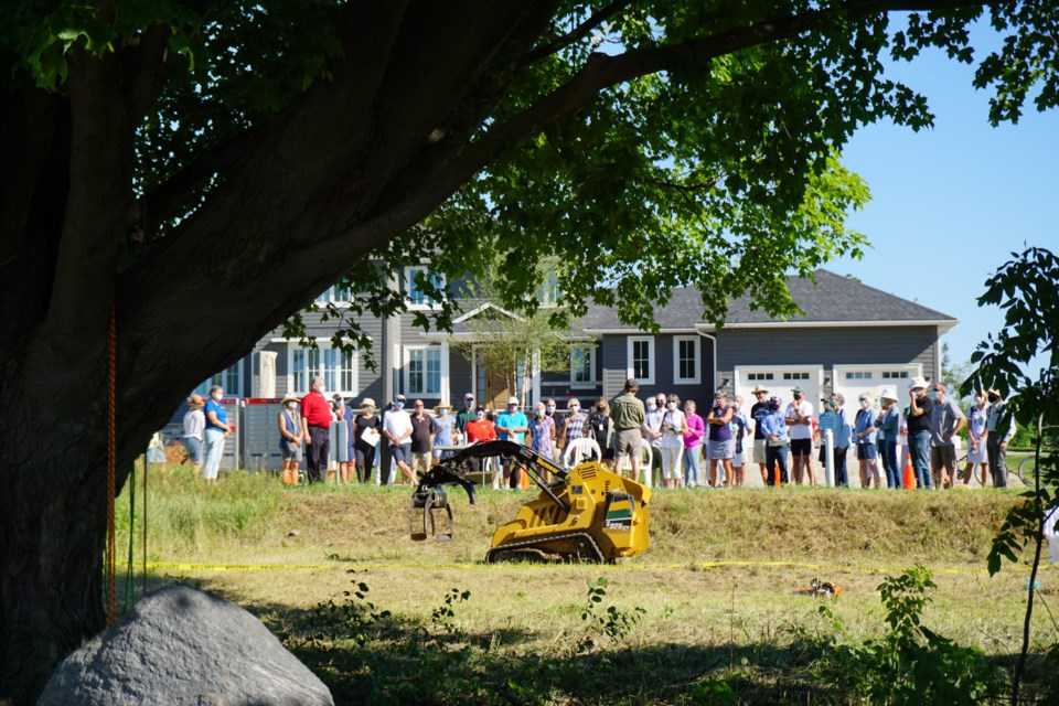 Tree Trust was launched in the Town of the Blue Mountains on the morning of July 31. Jennifer Golletz/CollingwoodToday