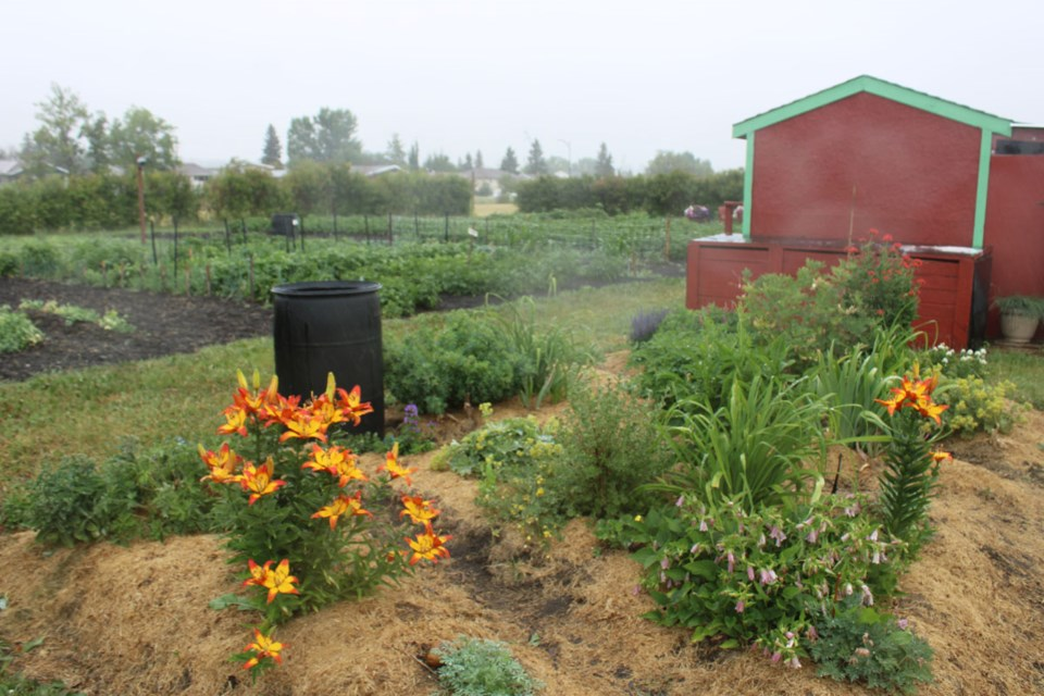 dc-community-gardens