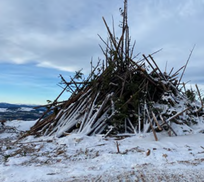 Recoverable saw logs in Chetwynd.