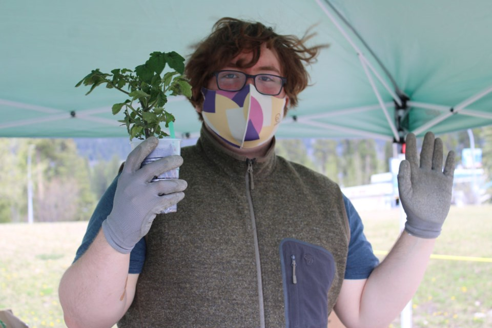 Julian Montgomery holds up a starter tomato plant for sale.