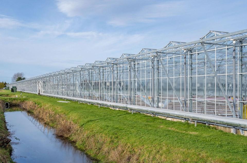 agraflora cannabis greenhouse ladner bc
