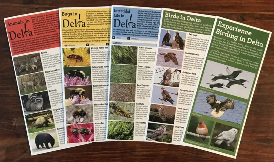 First Set of DNS Nature Brochures