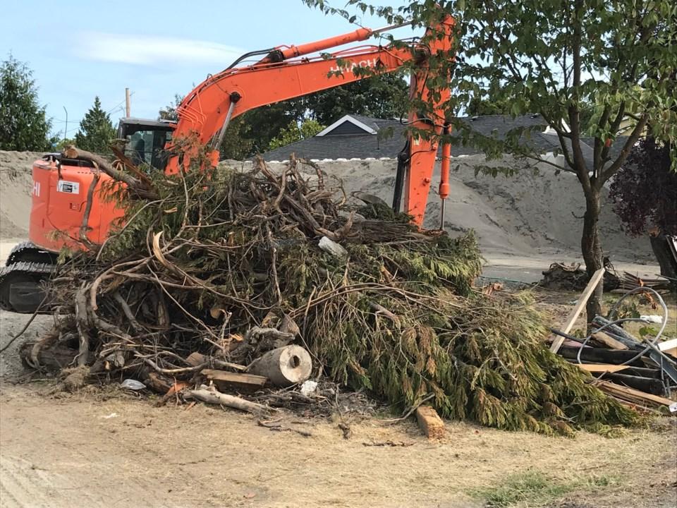 delta ,bc tree bylaw