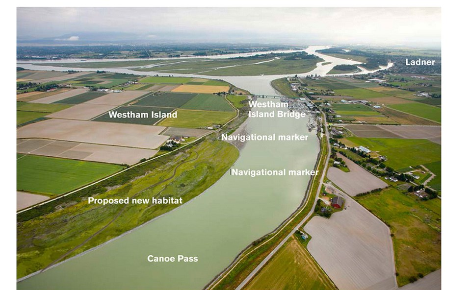 port delta marsh project