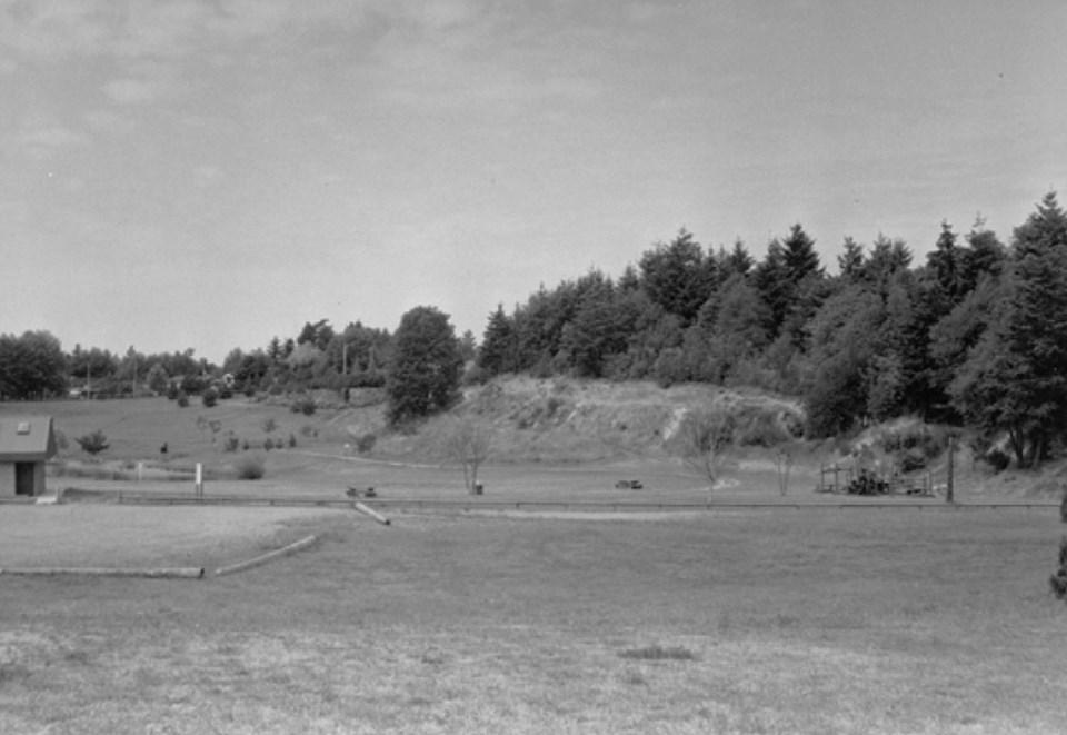 Untitlediefenbaker park, tsawwassen, 1986d-1