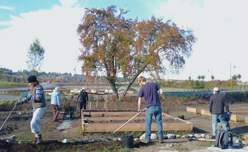 Earthwise volunteers in the garden