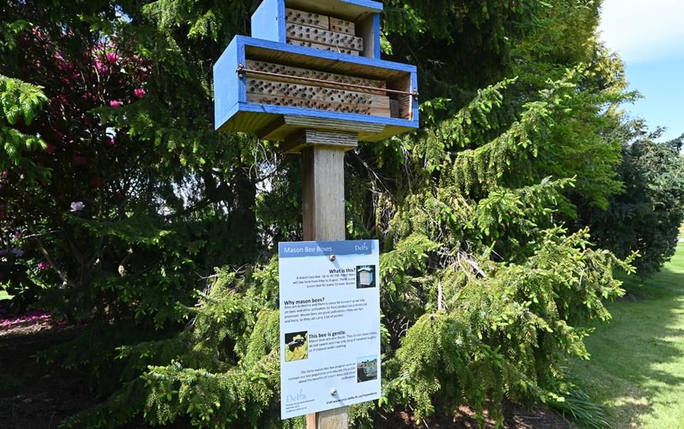 Mason Bee Box Ladner