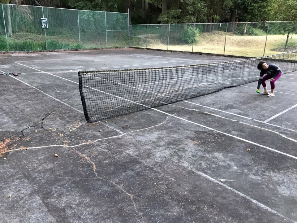 sport courts - endersby park north delta