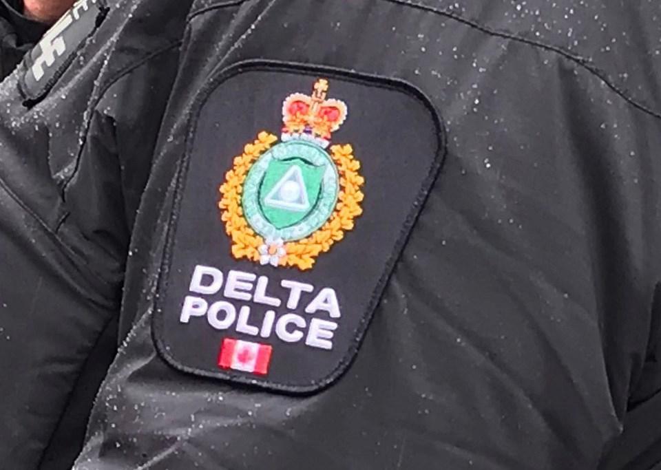 delta police CSO program