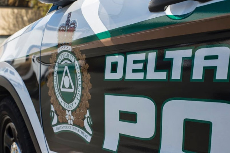 delta police logo on cruiser