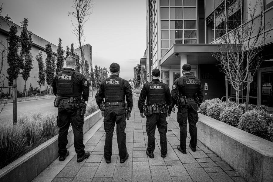 DPD violence suppression team
