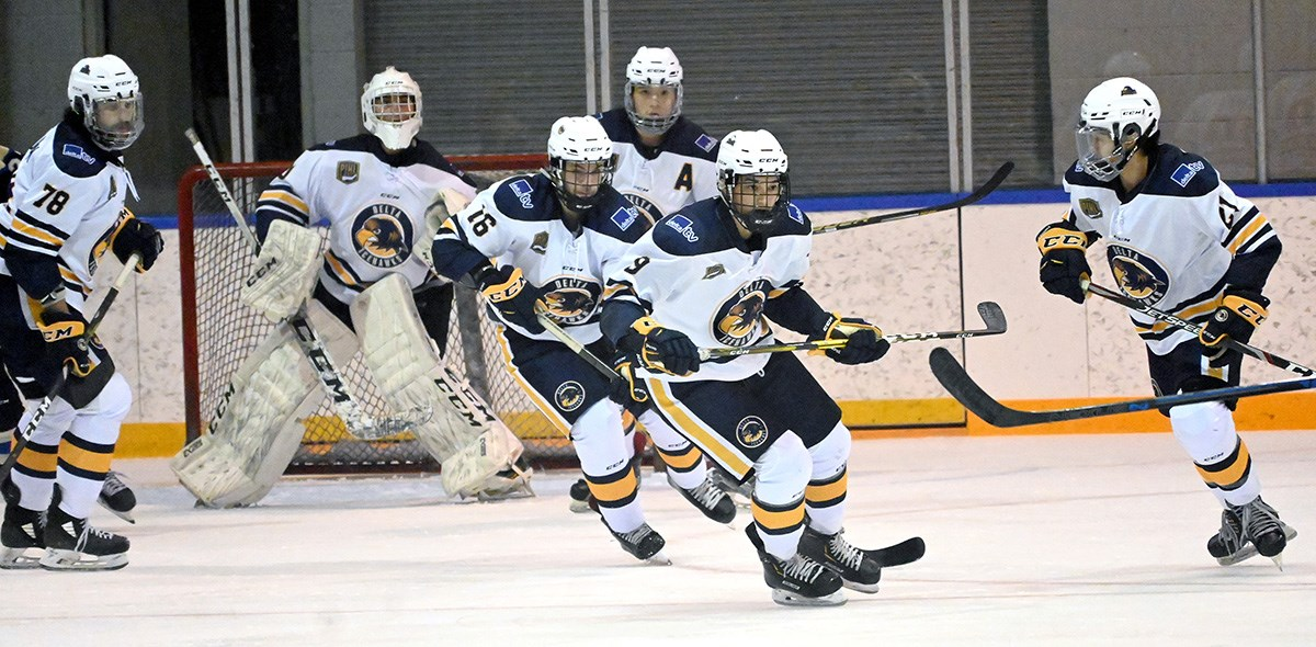 Ice Hawks can only look ahead after lost season