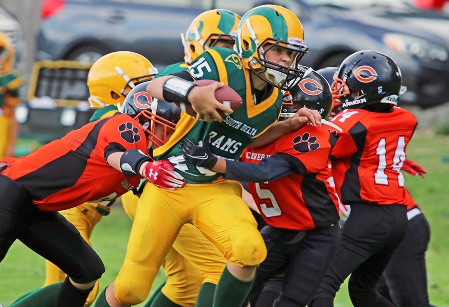 South Delta Pee Wee Rams battled Cloverdale as part of Green and Gold Day last Sunday at Dennison Park