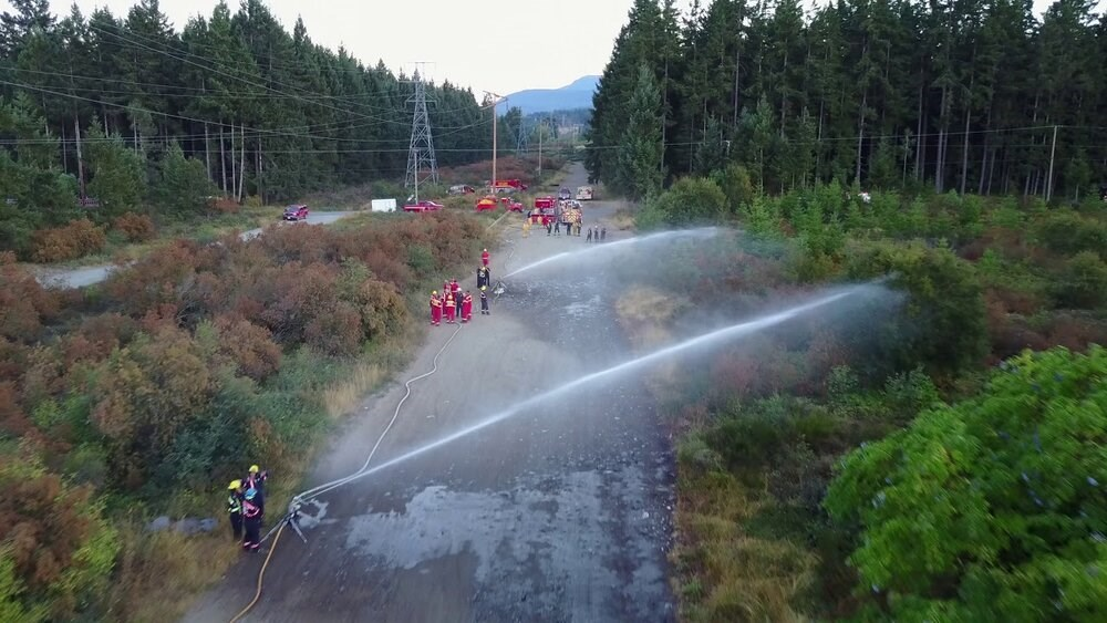 Vancouver deploys water cannons to save trees hit by heat wave