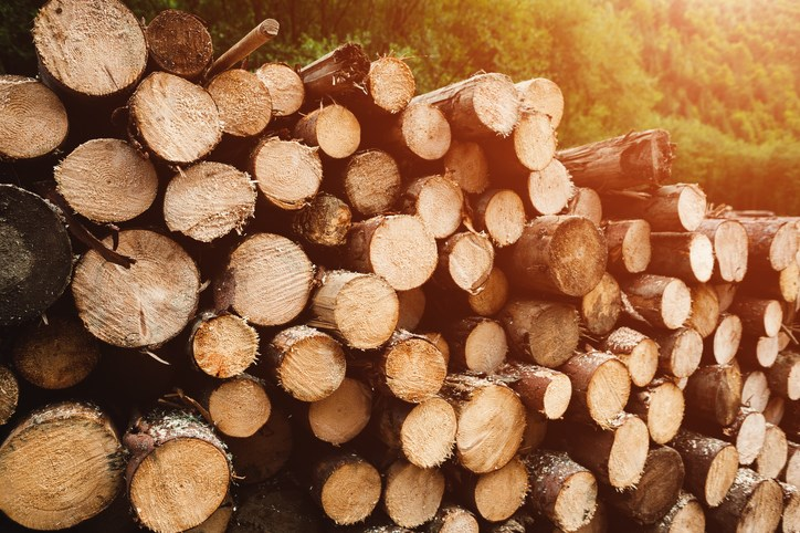 woodlogs