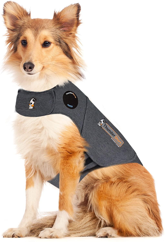 ThunderShirt dog vest.