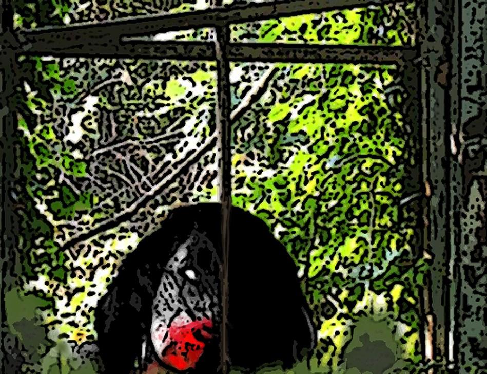free online zombie stories free