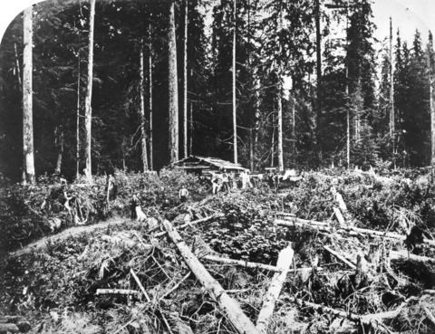 Logging activities in the area of present day Denman Street and English Bay in 1868. City of Vancouv