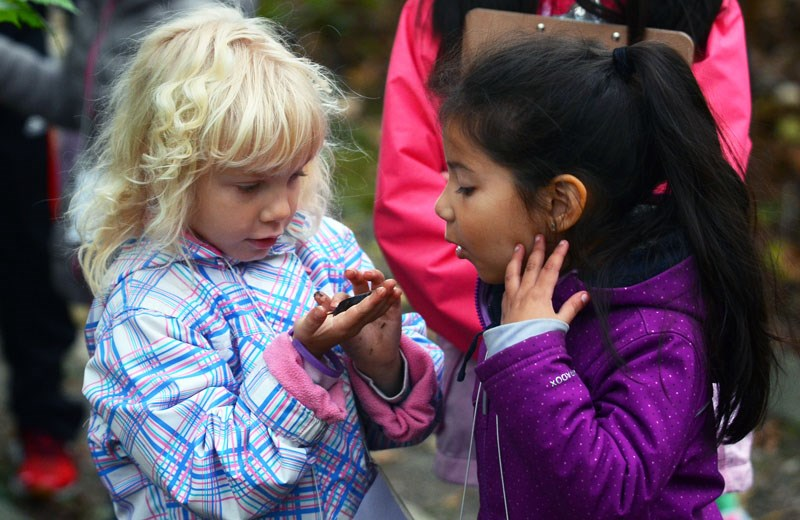 Aubrey Elementary School kindergarteners Brooke Saunders and Kimberly Gonzalez Cruz get up close and personal with a slug during an outdoor education day at Burnaby Lake Park last week.